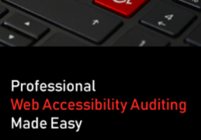 Tesxtbook Cover - Professional Web Acceessibility Auditing Made Easy